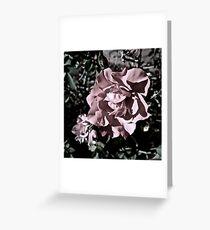 Ballerina Roses Greeting Card