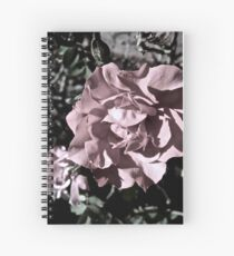 Ballerina Roses Spiral Notebook