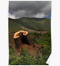 Beauty of Liptov, Slovakia Poster