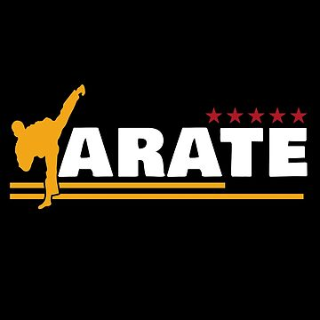 Karate T-shirt & Gift by larry01