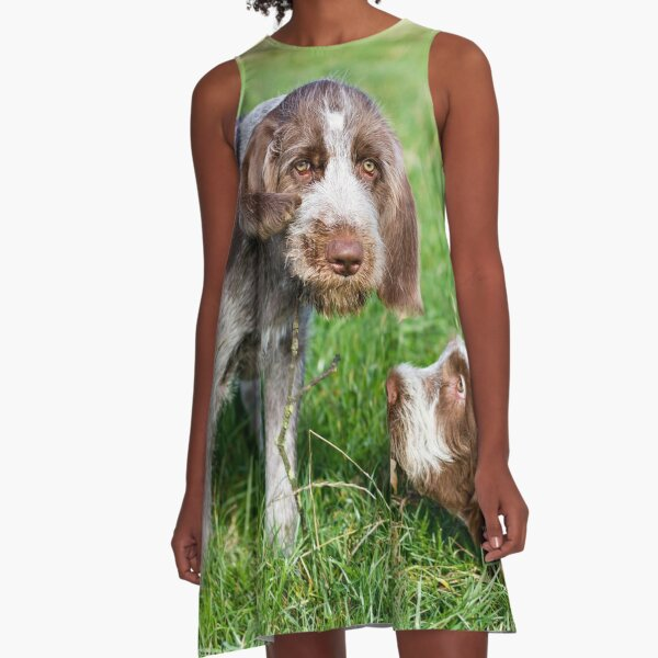 Brown Roan Italian Spinone Puppies Playing A-Line Dress