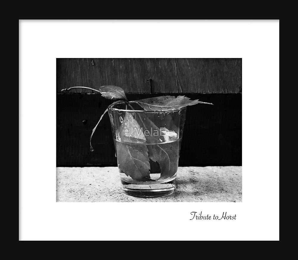 August - Horst by MelaB