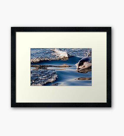 Gliding Through The Water Framed Print