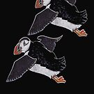 Puffins by MagsWilliamson