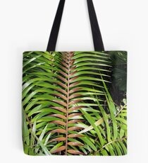 Ceratozamia mexicana Tote Bag