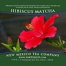 Hibiscus Matcha - Organic by NMTeaCo