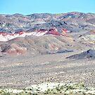 Remote Nevada by marilyn diaz