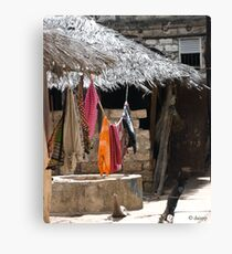 washing line Canvas Print