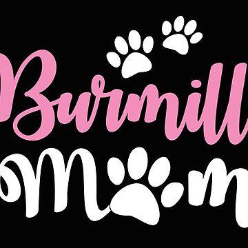 Burmilla Mom (Cat mum) by jazzydevil