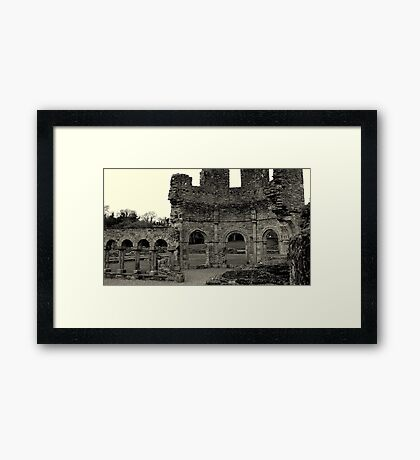 Lavado at Mellifont Abbey. Co, Louth. Ireland. Framed Print