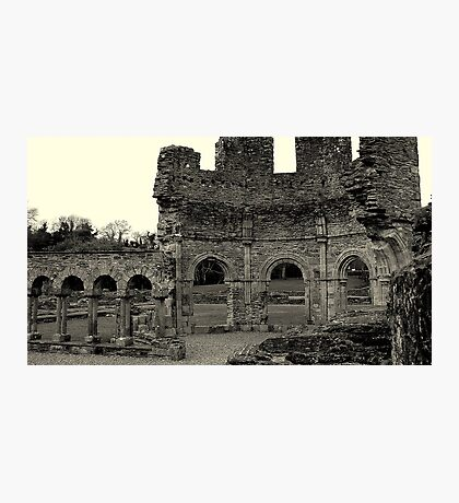 Lavado at Mellifont Abbey. Co, Louth. Ireland. Photographic Print