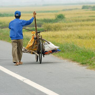 Transport, Vietnam by natureshues