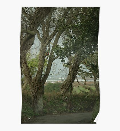 A sea view through the trees Poster