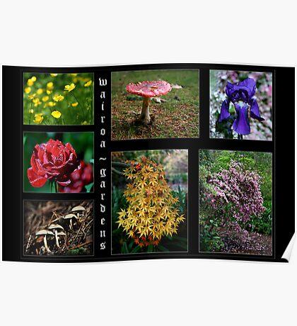 Flowers & Fungi ~ Wairoa Poster