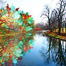 Autumn Magic by Keith Reesor