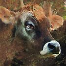 pretty cow by jesnowson