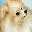 Pomeranian Oil Paintiing by Charlotte Yealey
