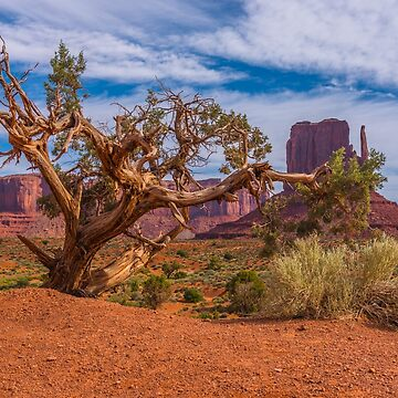Somewhere In The West by JohnDSmith