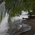 Fishing Alone...Central America by graeme edwards