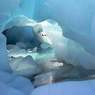 Ice Cave..Franz Joseph Glacier,NZ by graeme edwards
