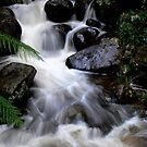 Furry Falls...Cement Creek,Warburton,Victoria by graeme edwards
