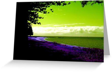 Scarborough Beach, Queensland by Bowen Bowie-Woodham