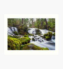 Pearsony Falls, Oregon Art Print