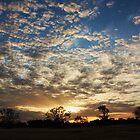 Good Morning Australia by brendanscully
