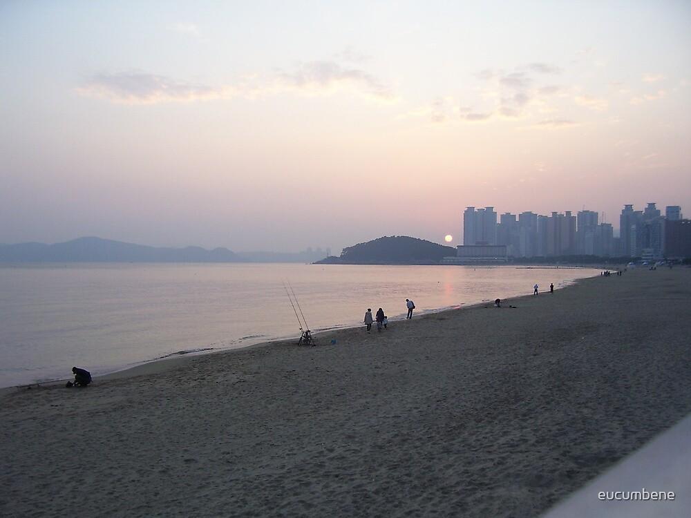 Sunset at Haeundae Beach - Busan, Korea by eucumbene