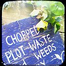Compost Rules by Northcote Community  Gardens
