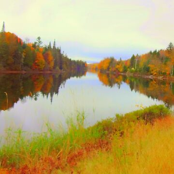 Androscoggin River 13 Mile Woods by MAMMAJAMMA