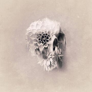 Zerfall Skull Light von aligulec
