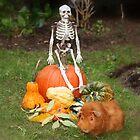 Halloween von AnnDixon