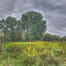 Blacklick Circle Earthwork, Reynoldsburg, OH by Jeremy Lankford