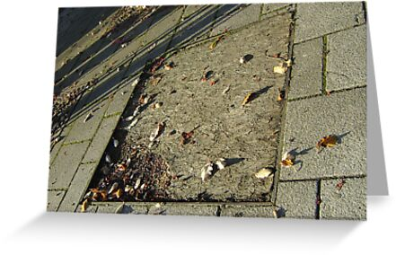autumn quadrilateral (pavement in Fall, Burntisland) by armadillozenith