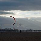 Red kite at night by Kirsten Baiden-Amissah
