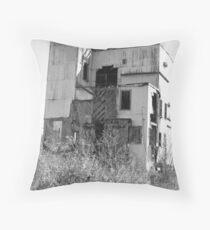 Dilapitated Bourbon Distillery Throw Pillow