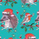 Hedgehog Santa and Robin Santa Christmas, Holidays by MagentaRose