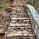 Autumn Stairway by Glenna Walker