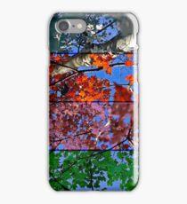 Four Seasons iPhone Case/Skin