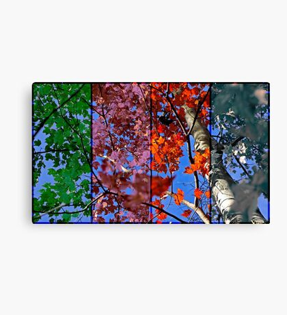 Four Seasons Canvas Print