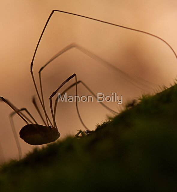 creepy silhouette by Manon Boily