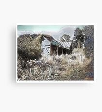 Old house reclaimed by nature Canvas Print