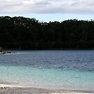 Lake McKenzie by Tammy Serdiuk
