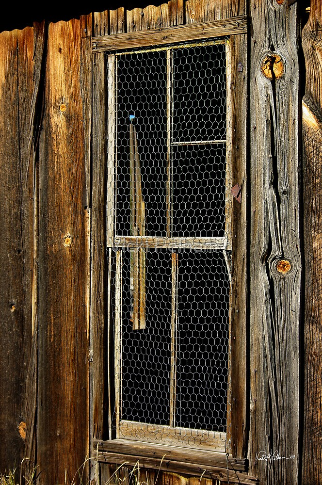 Weathered Texture of Time, Lake Valley NM by Vicki Pelham