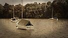 Sailboats by Jessica Liatys