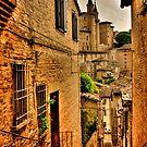 View on Duke palace, Urbino by anatol734