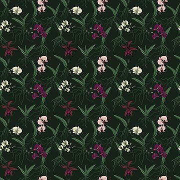 Orchid pattern by studionaika