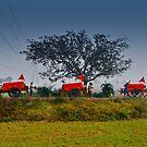 A village caravan by Sagar Lahiri