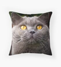 Yellow eyes, White whiskers Throw Pillow